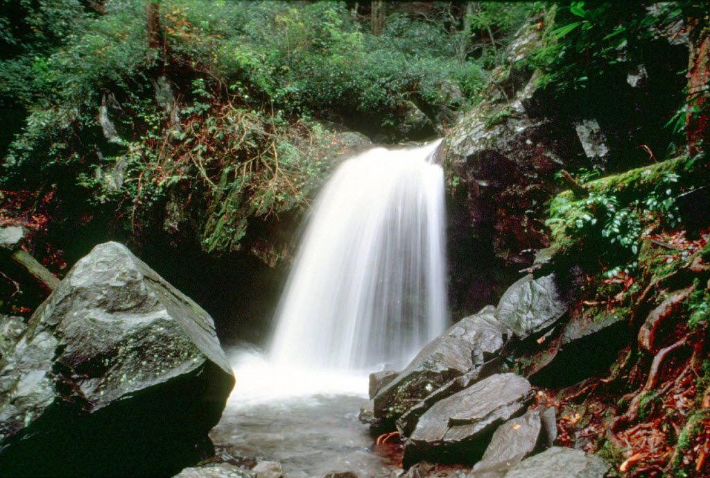 Grotto Falls is one of the many waterfalls to discover in Great Smoky Mountains National Park, which straddles the Tennessee-North Carolina border.