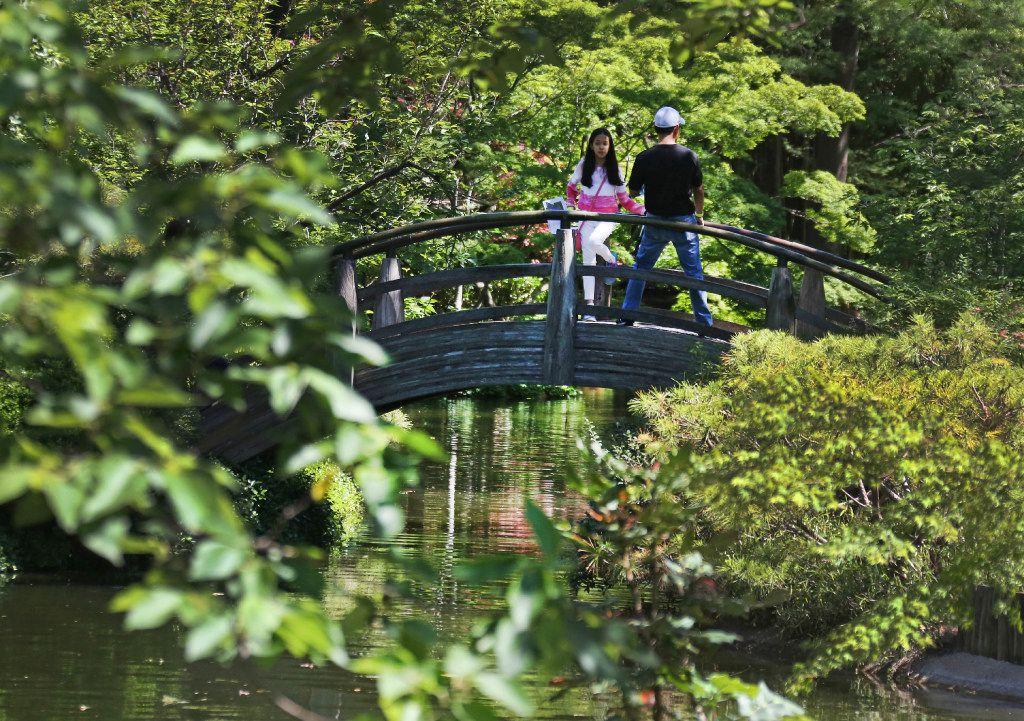 The Japanese Garden Spring Festival at the Fort Worth Botanic Garden in Fort Worth.