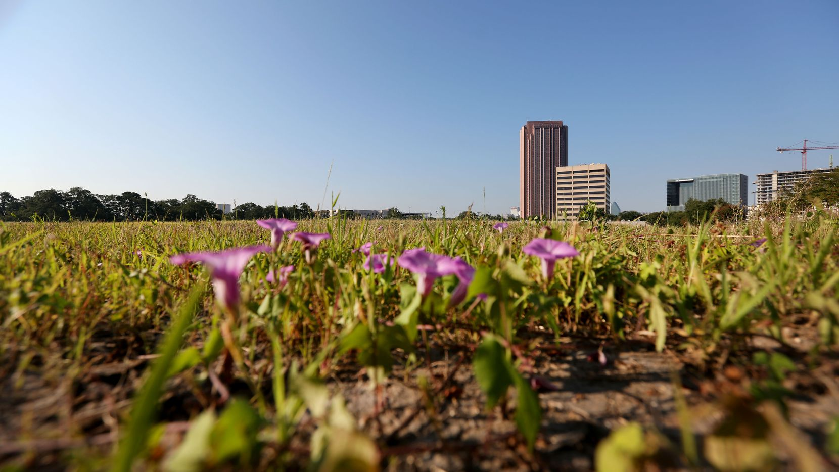 The high-profile development site on U.S. Highway 75 has been vacant for more than two years.