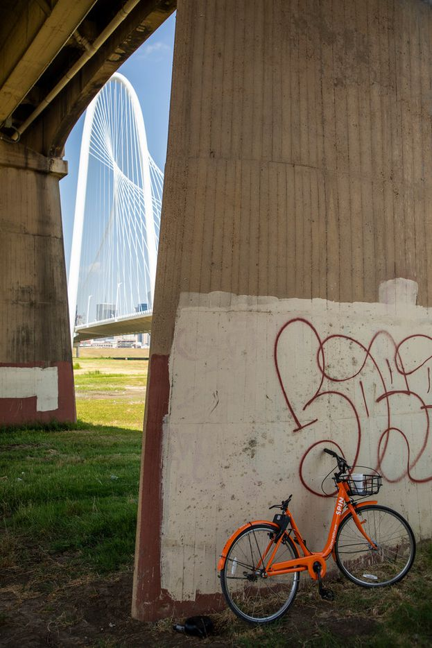 A broken Spin rental bike rests under the Ronald Kirk Bridge near the Margaret Hunt Hill Bridge along the Trinity Skyline Trail on Tuesday, June 5, 2018, in Dallas. (Smiley N. Pool/The Dallas Morning News)