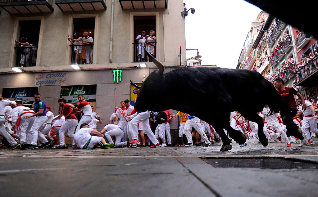 Participants run next to a Puerto de San Lorenzo's fighting bull on the first day of the San Fermin bull run festival in Pamplona.
