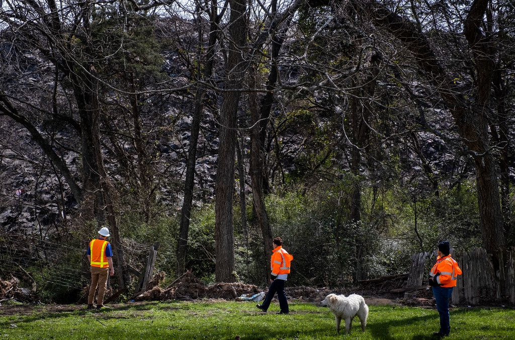City of Dallas inspectors, along with a neighborhood dog, survey the mountain of shingles at Blue Star Recycling that rises over the backyard of  Marsha Jackson's home off South Central Expressway on Wednesday, March 6, 2019, in Dallas. (Smiley N. Pool/The Dallas Morning News)