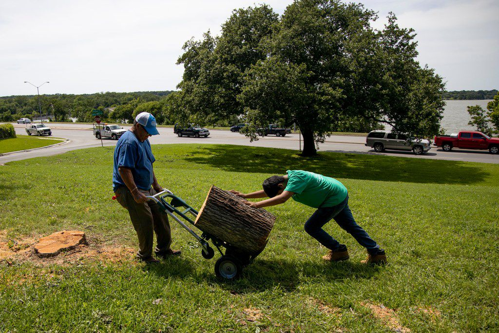 Isidro Medrano and Eli Benavides, 12, work to remove a tree near White Rock Lake in Dallas on Monday, June 10, 2019. Strong storms produced widespread damage throughout Dallas-Fort Worth, causing more than 200,000 people to lose power.