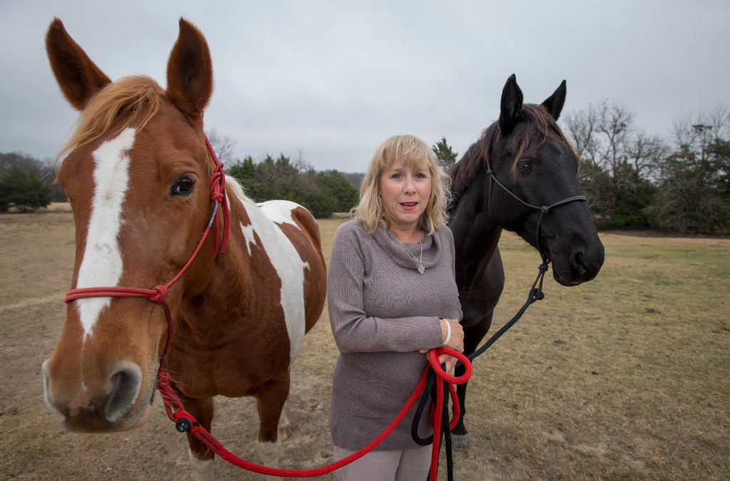 Brenda Rizos, a Lovejoy ISD activist, with two of her horses on her Lucas property in 2016. She's served as a volunteer citizens watchdog. Her latest cause is the district's 2016 tax ratification election.