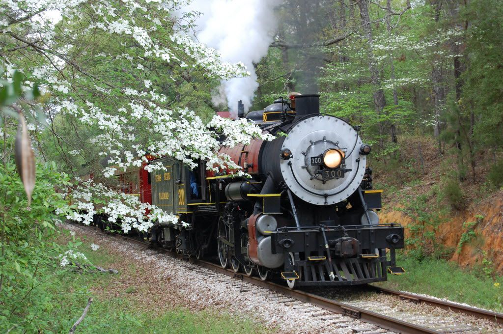 The vintage Texas State Railroad travels a path between Palestine and Rusk in East Texas.