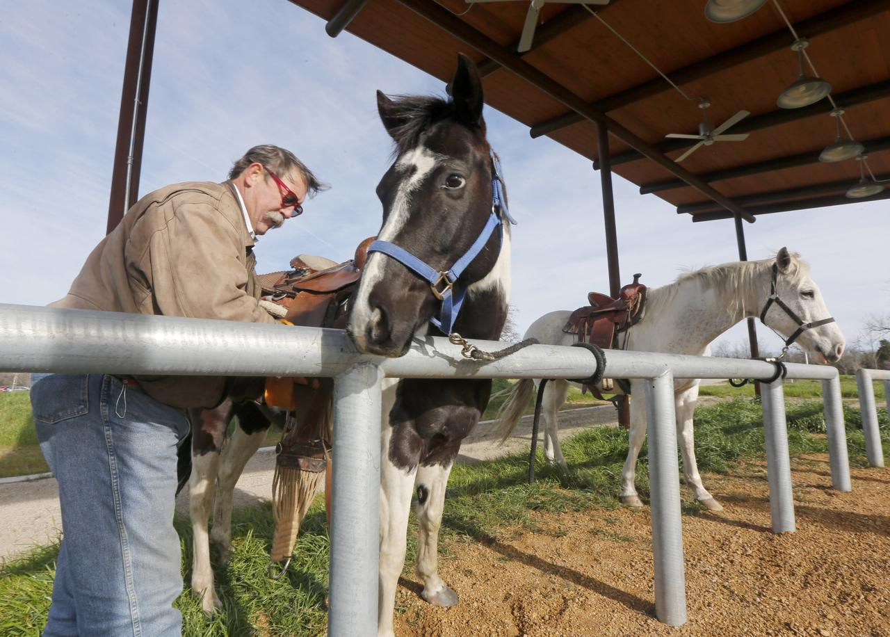 "Barnes Davis saddles up Jedi and Pepper at the horse park. Mayor Mike Rawlings hailed the park: ""We've been wanting this for so long, and this is a wonderful place to connect."""