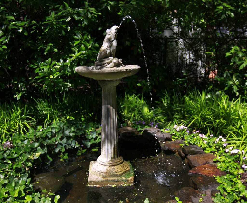 A frog birdbath near White Rock Lake.  (Mona Reeder/The Dallas Morning News) 05192011xARTSLIFE