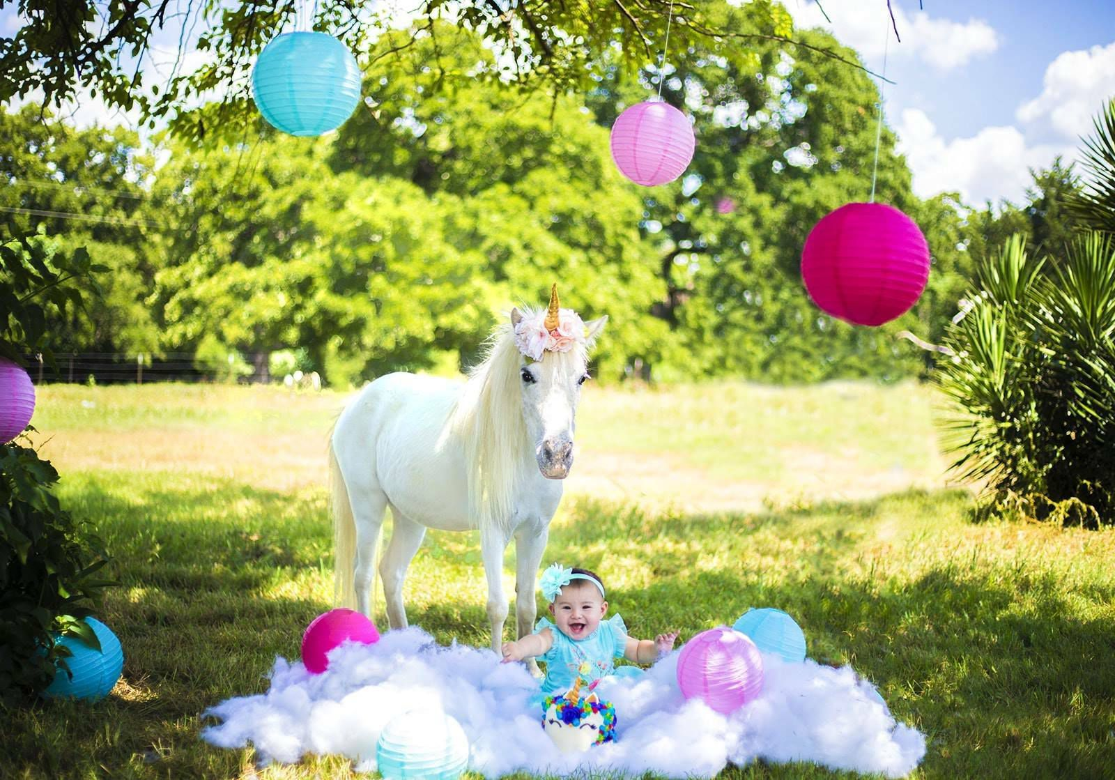 "Air Ponies' ""unicorns"" are rescues owned by an Operation Kindness volunteer.."