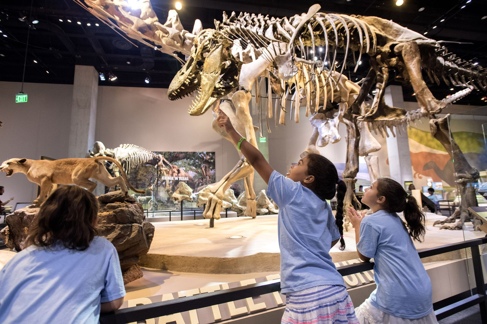Amelia Pancoast, 9, center, points out dinosaur skeletons to her sisters during the Snore and Explore sleepover event at the Perot Museum in Dallas.