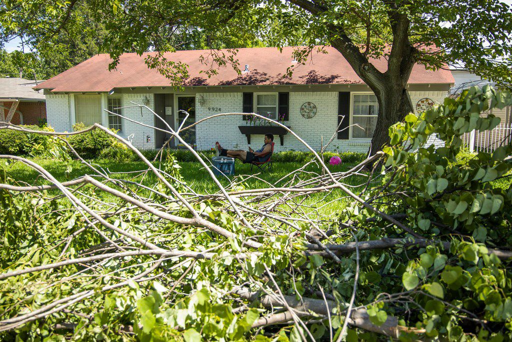 Randy Morales looks at his phone as trees left from the storm sits near on his front lawn near Coldwater Circle and Estacodo drive in Dallas on Monday, June 10, 2019. Strong storms produced widespread damage throughout Dallas-Fort Worth, causing more than 200,000 people to lose power.(Shaban Athuman/Staff Photographer)