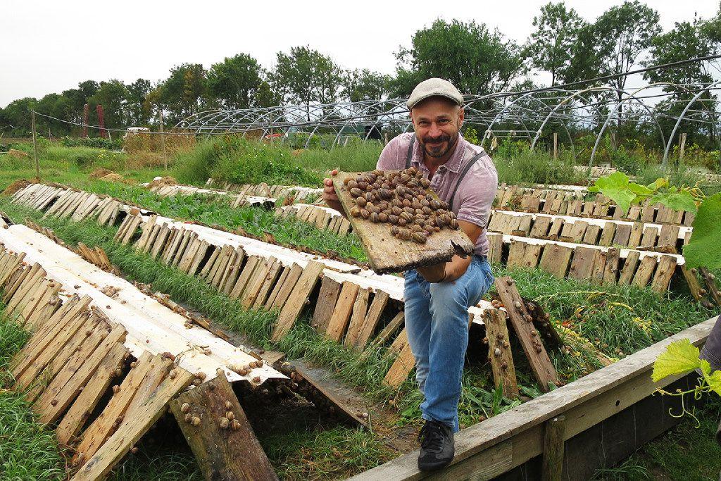 Andreas Gugumuck at his snail farm in Vienna.