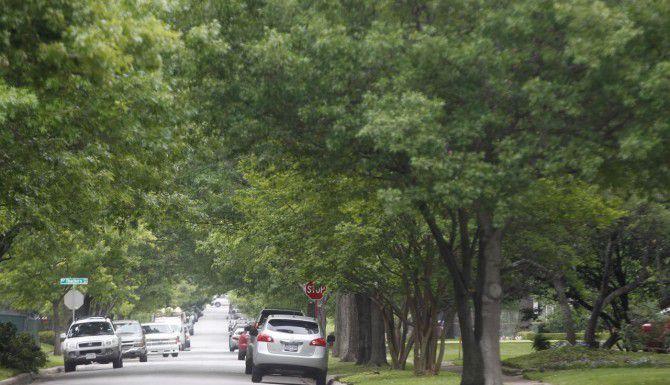 El propietario de una empresa de poda de árboles enfrenta cargos federales por conspirar para establecer compañías intermediarias para evitar multas por contratar trabajadores indocumentados. (DMN/ARCHIVO)