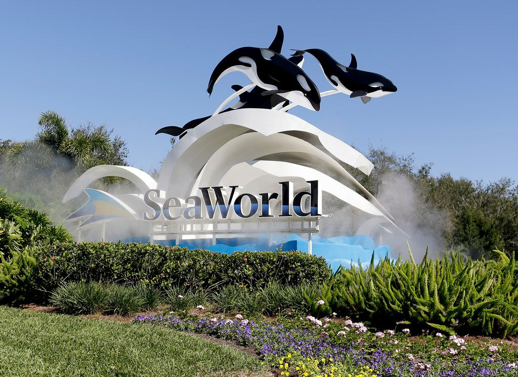 FILE- In this Jan. 31, 2017, file photo, the entrance to Sea World is seen, in Orlando, Fla. SeaWorld Entertainment announced Tuesday, Aug. 7, 2018, that it is eliminating 125 positions, despite recent increases in attendance and revenue. SeaWorld spokesman Travis Claytor says the restructuring affects all of the company's theme parks as well as corporate offices in Orlando, Florida. Besides SeaWorld parks, the company has Sesame Place and Busch Gardens parks. (AP Photo/John Raoux, File)