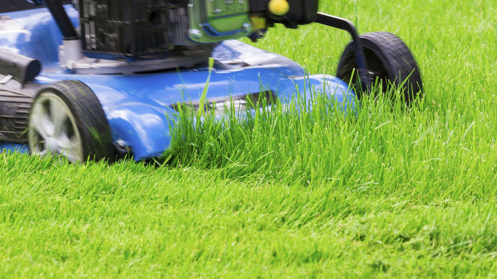 It's a good idea to have your lawn mower serviced by a professional before tackling that summer grass.