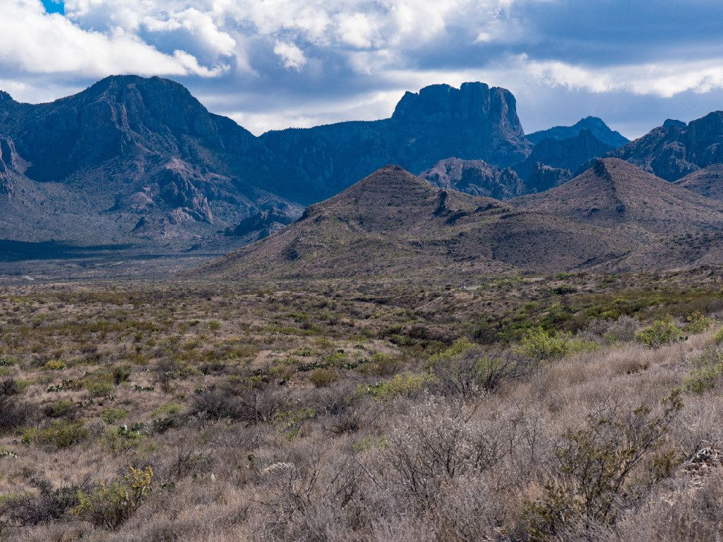 The Chisos Mountains rise from the Chihuahuan Desert floor at Big Bend National Park.