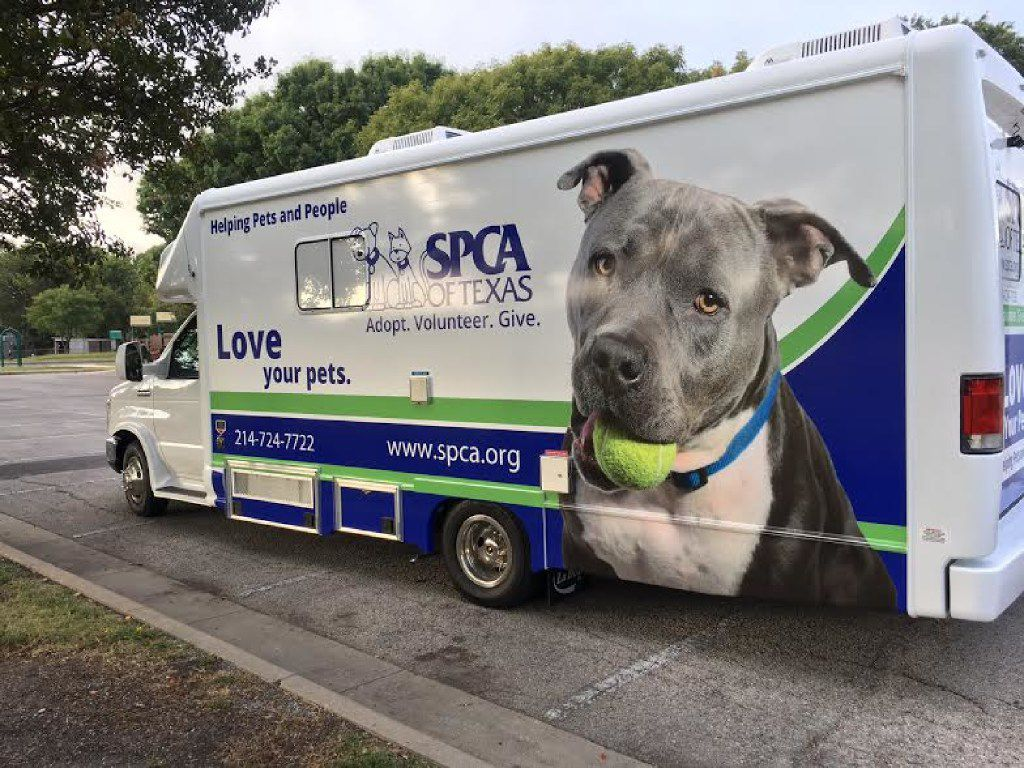 An SPCA of Texas spay-and-neuter clinic rolls on wheels. It is exclusively dedicated to southern Dallas, where the loose-dog problem is worst.
