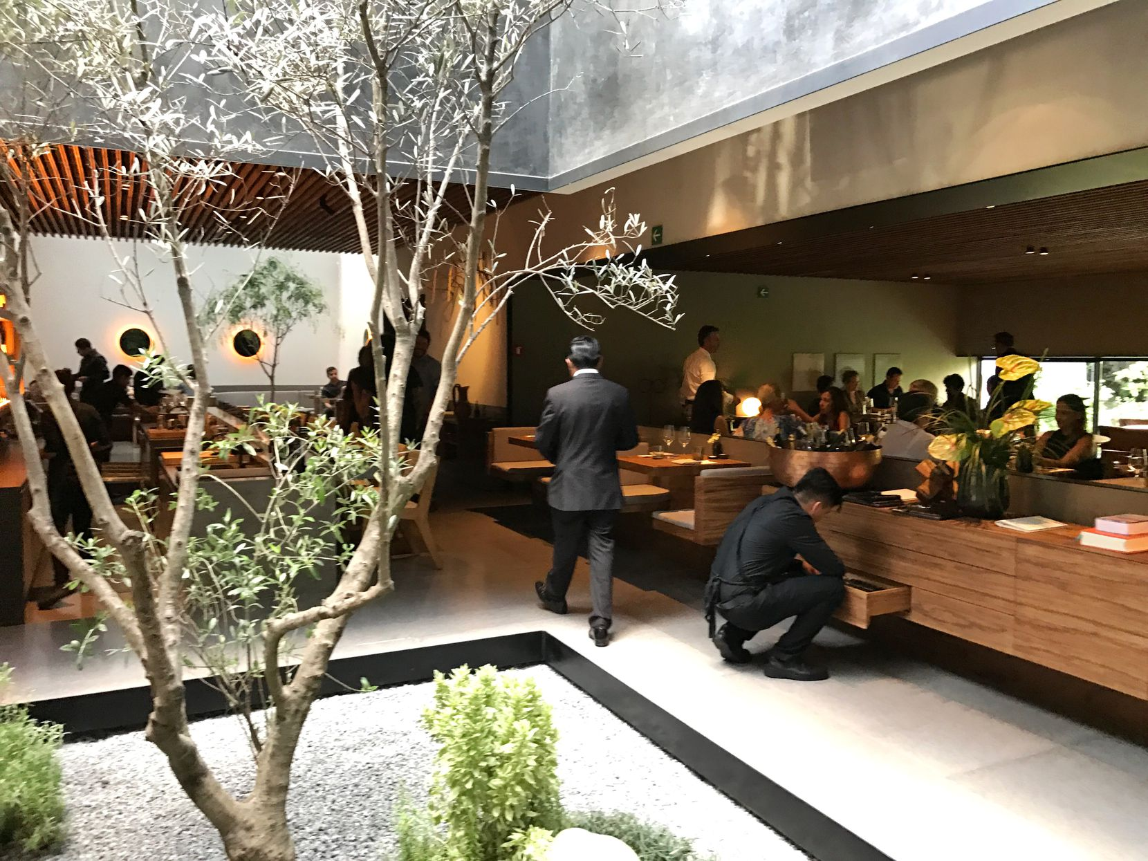 The new Pujol in Mexico City: The dining room is on the right, the omakase taco bar on the left, behind the tree. (Leslie Brenner/Staff)