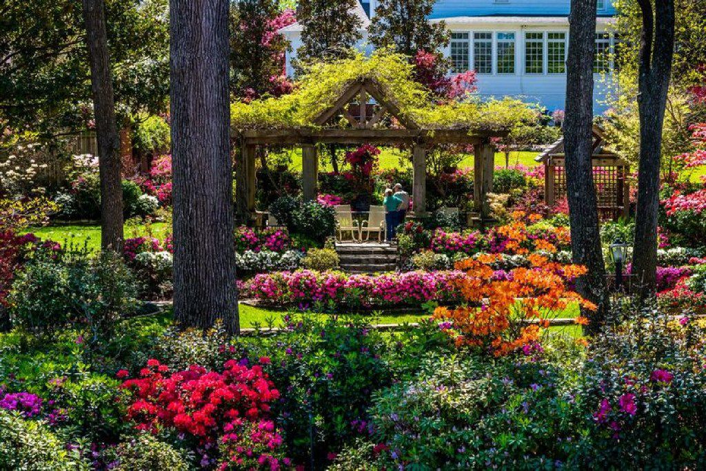 Historic homes and public spaces are on display during  Tyler's annual Azalea and Spring Flower Trail.