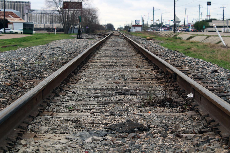 La ruta del tren bala se decidirá luego de un estudio de impacto ambiental.