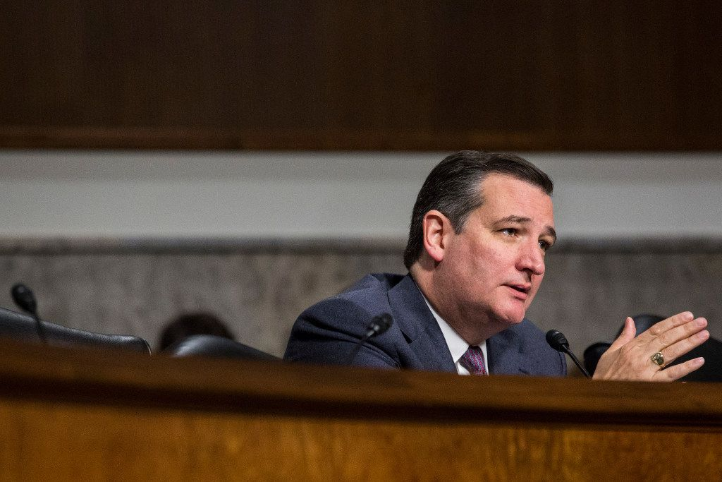 Sen. Ted Cruz, R-Texas, appeared at a Texas Public Policy event in Austin on Friday.  (AP Photo/Zach Gibson)