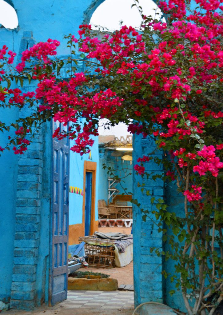 Bougainvillea blossoms drape the entryway of the Sahloul family compound.