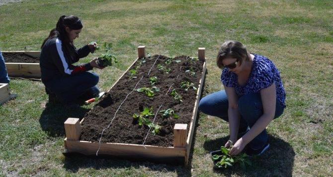 Miembros del club ambiental del colegio comunitario Cedar Valley atienden un jardín comunitario.(CORTESÍA)