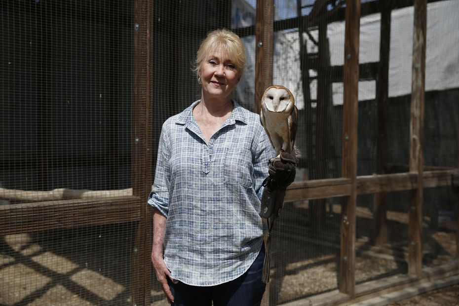 Kathy Rogers holds a barn owl at the Rogers Wildlife Rehabilitation Center in Hutchins.