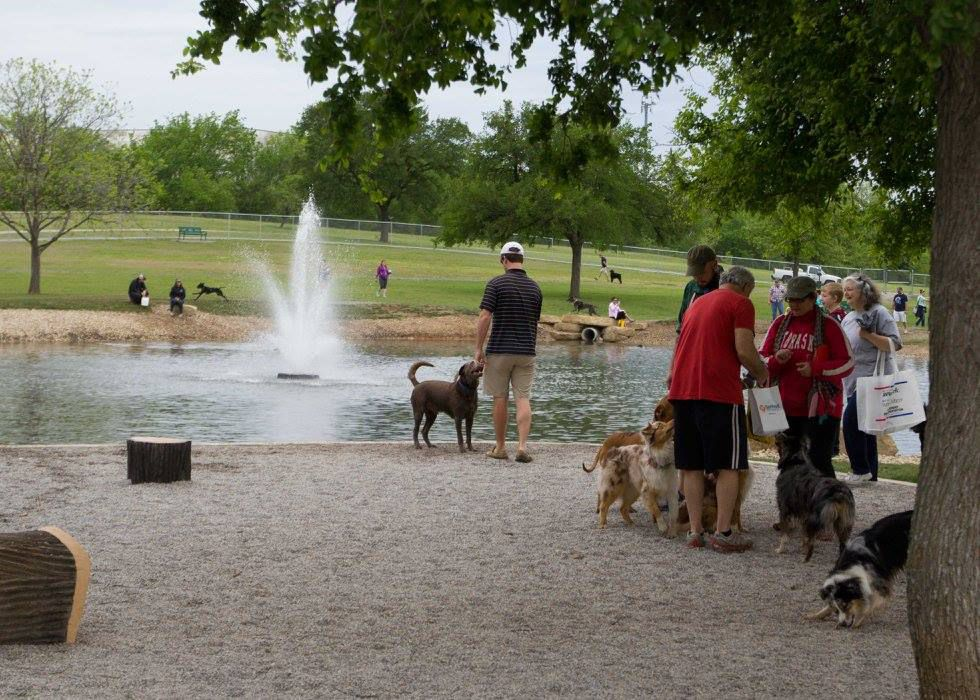 Dog About Town: Walks, parties and more pooch-friendly