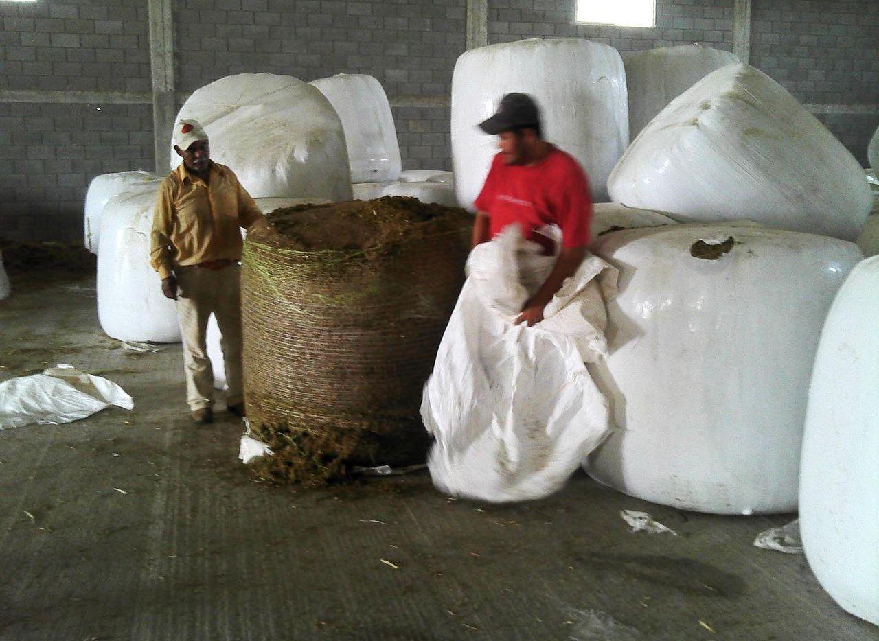 Una foto encontrada en el celular de Juan Jesús Guerrero Chapa muestra grandes pacas de lo que parecer ser marihuana.
