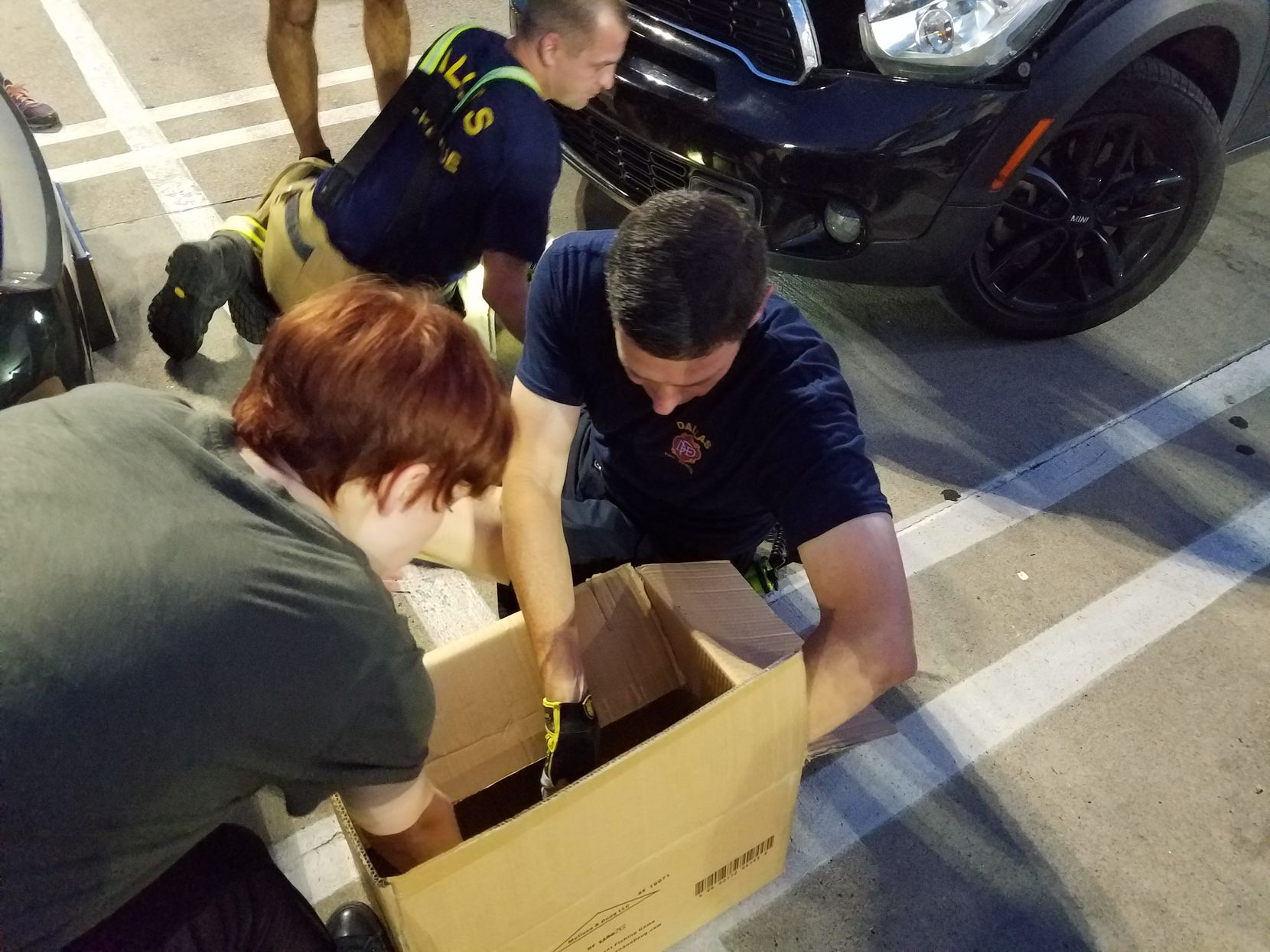 A Dallas Fire-Rescue team helped rescue a cat from a car in East Dallas Wednesday night.