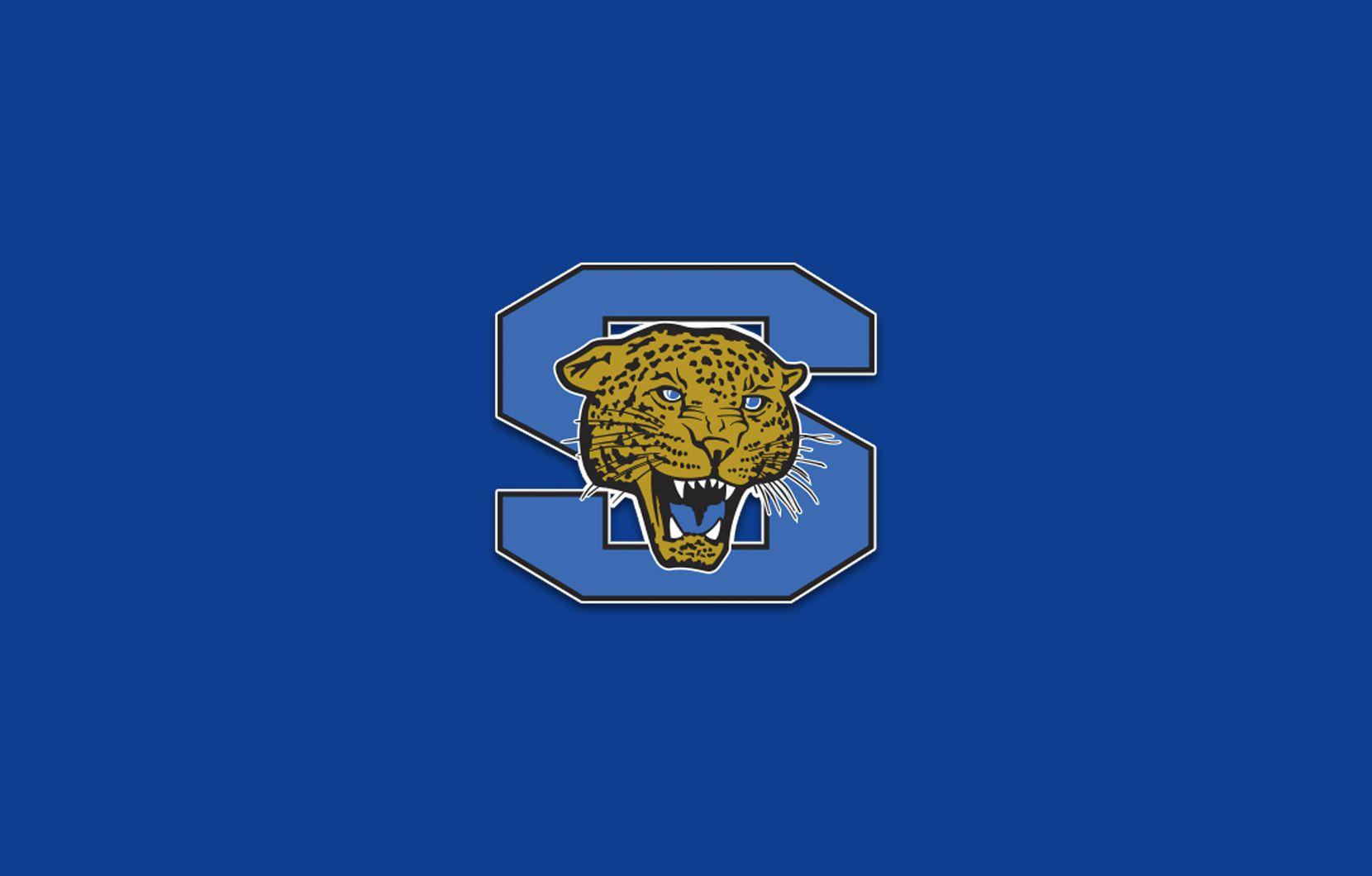 Mansfield Summit logo.