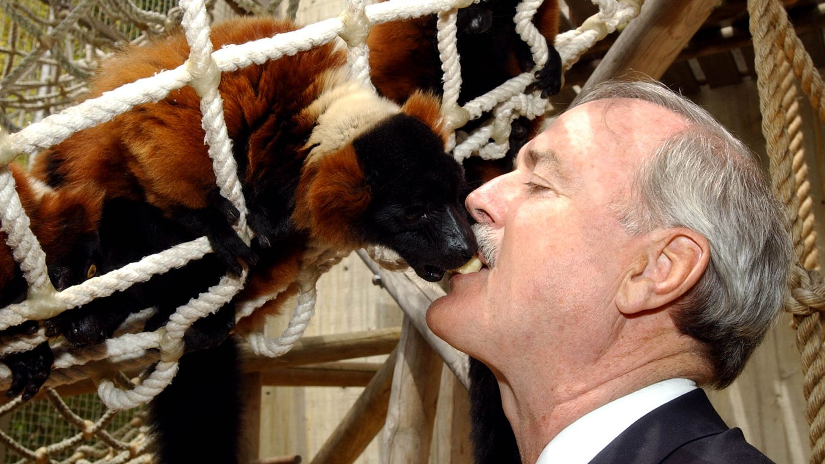 Actor John Cleese feeds a lemur from his mouth at the San Francisco Zoo, Sunday, June 2, 2002, in San Francisco. Cleese, a longtime lemur advocate, visited the zoo to help kick off the opening of the Lipman Family Lemur Forest, which opens to the public on June 29, 2002.