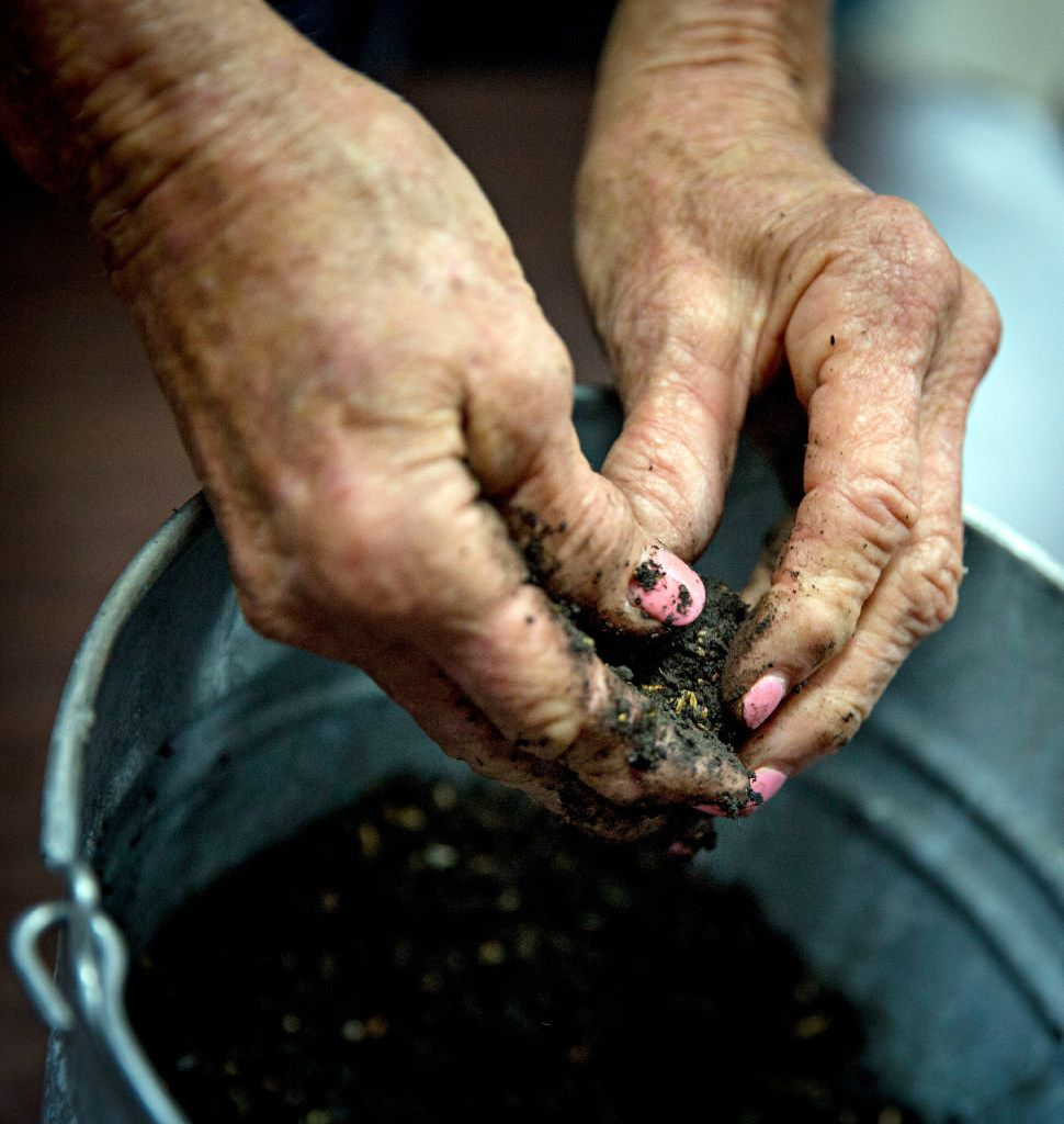 """Sara Roland creates """"seed bombs"""" out of clay, compost and seeds."""