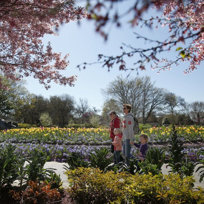 Alleen Buhl (left) and Jennifer Bechthold walk with their daughters Della Buhl, 5, (left) and Remy Bechthold, 3, at the Dallas Arboretum and Botanical Garden in Dallas on Feb. 25, 2016.