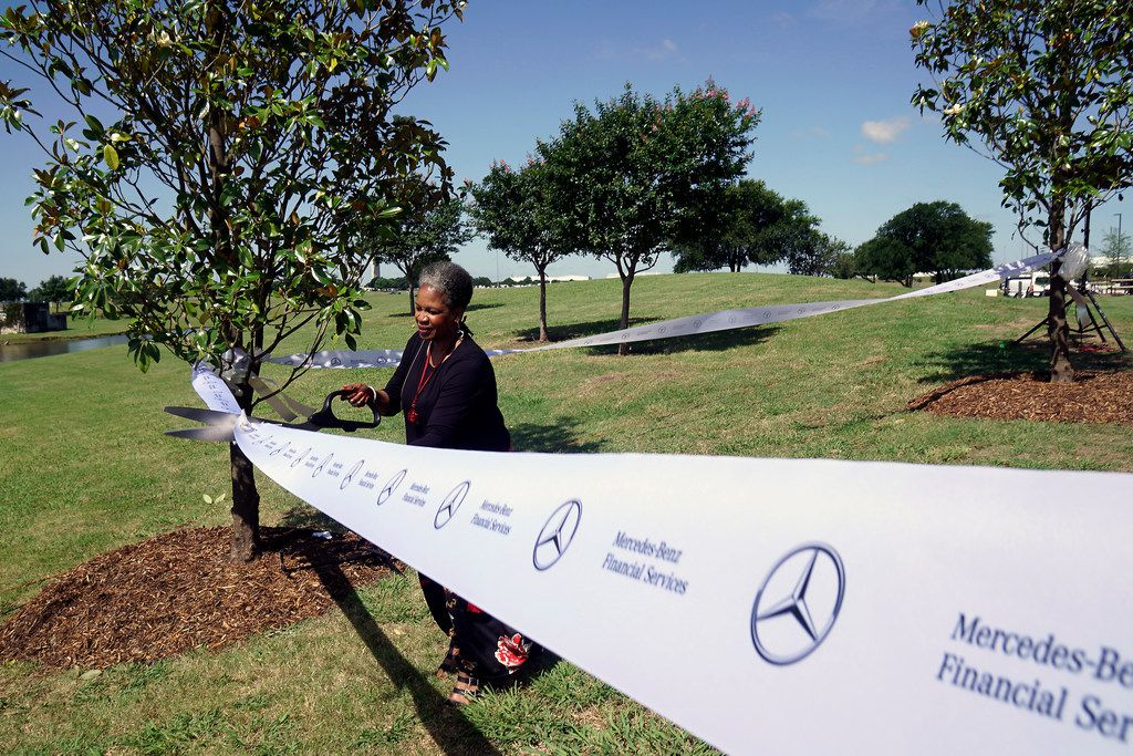 Mercedes Benz Financial Vice President of Operations Janet Marzett cuts a ribbon during a tree dedication ceremony at the grand opening of the Mercedes Benz Business Center in Fort Worth, Texas on Thursday, May 30, 2019. Mercedes-Benz Financial Services USA LLC held a grand opening ceremony to celebrate its newly completed business center at AllianceTexas, Hillwood's 26,000-acre master-planned, mixed-use development. Some of the features of the building include facial recognition entry, smart conference rooms, and both permanent art collections and rotating art exhibitions. (Lawrence Jenkins/Special Contributor)