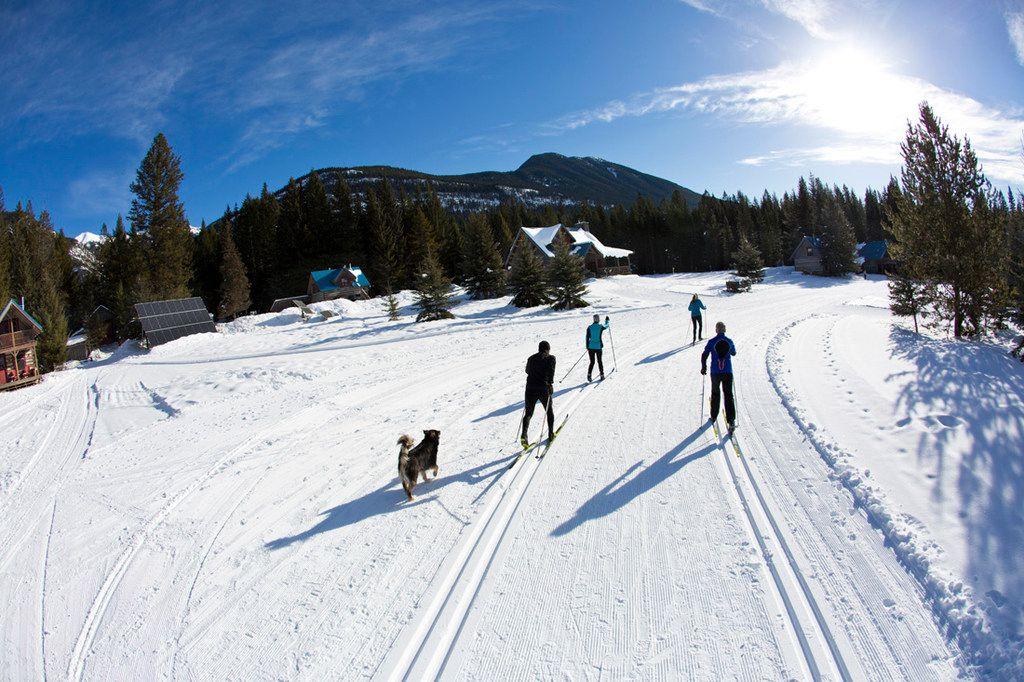 Solar panels line the Nordic ski track at Nipika Mountain Resort in Canada's Kootenay National Park.