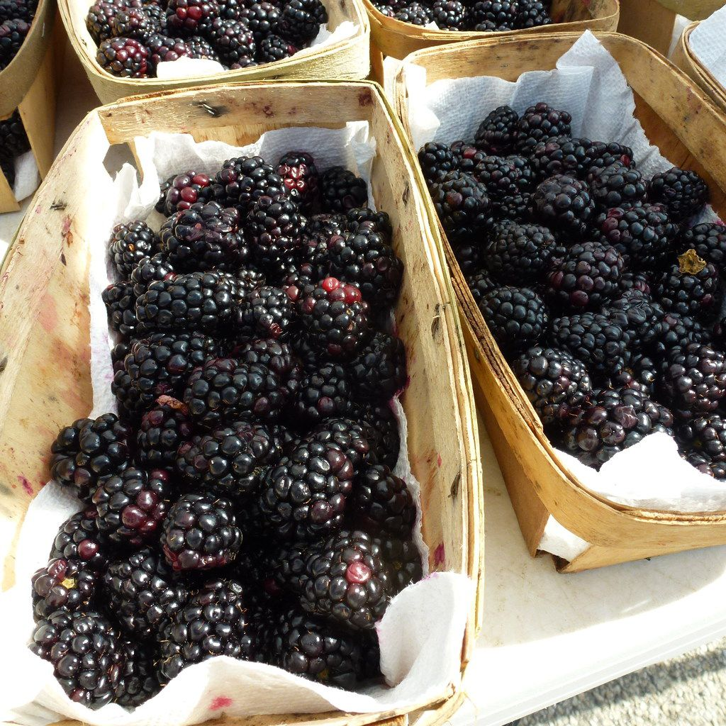 D-Bar Farms from Ponder sells a variety of berries, including these blackberries, at the Denton County Farmers Market next door to the Denton Community Market.
