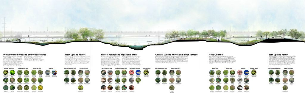 Plans for a park inside the Trinity River levees as shown Tuesday, Dec. 4, 2018.