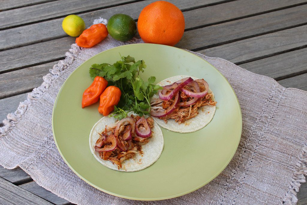 Cochinita pibil is traditionally served wrapped in warm corn tortillas with pickled onions.