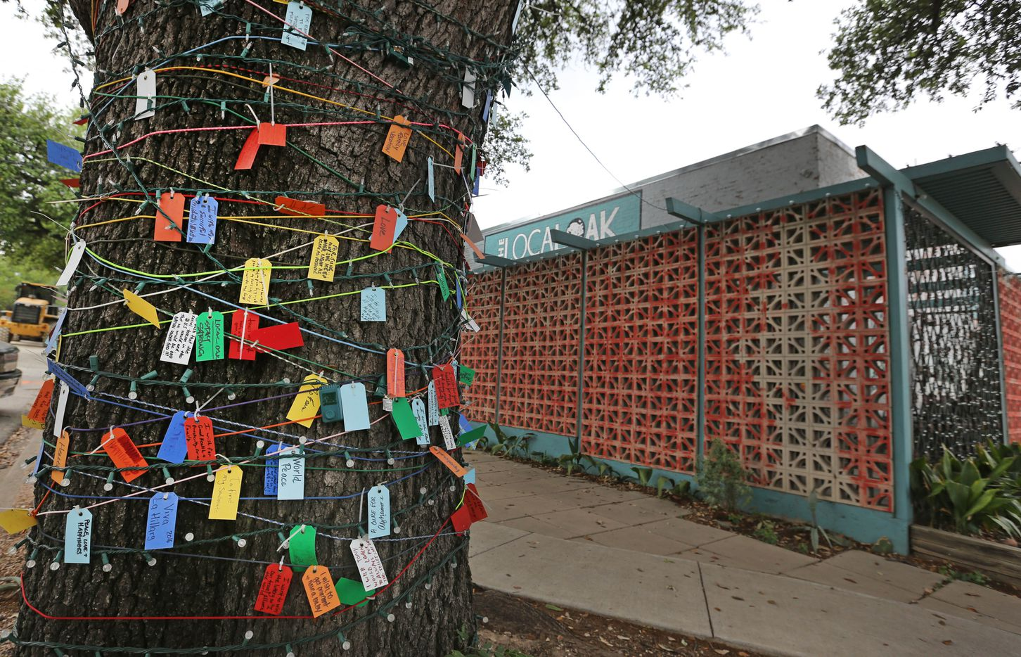 A tree covered with cards with wishes written on them is outside the Local Oak restaurant and bar near the Bishop Arts stop for the Oak Cliff streetcar, photographed on Thursday, April 13, 2017.