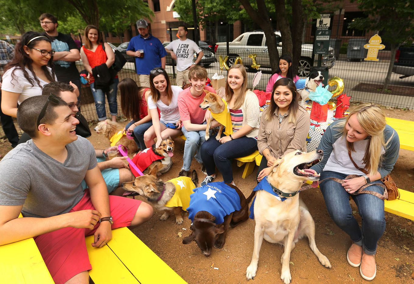 The atmosphere is festive at a dog's birthday party held at Mutts Canine Cantina in Uptown just outside of downtown Dallas, photographed on Saturday, April 1, 2017.
