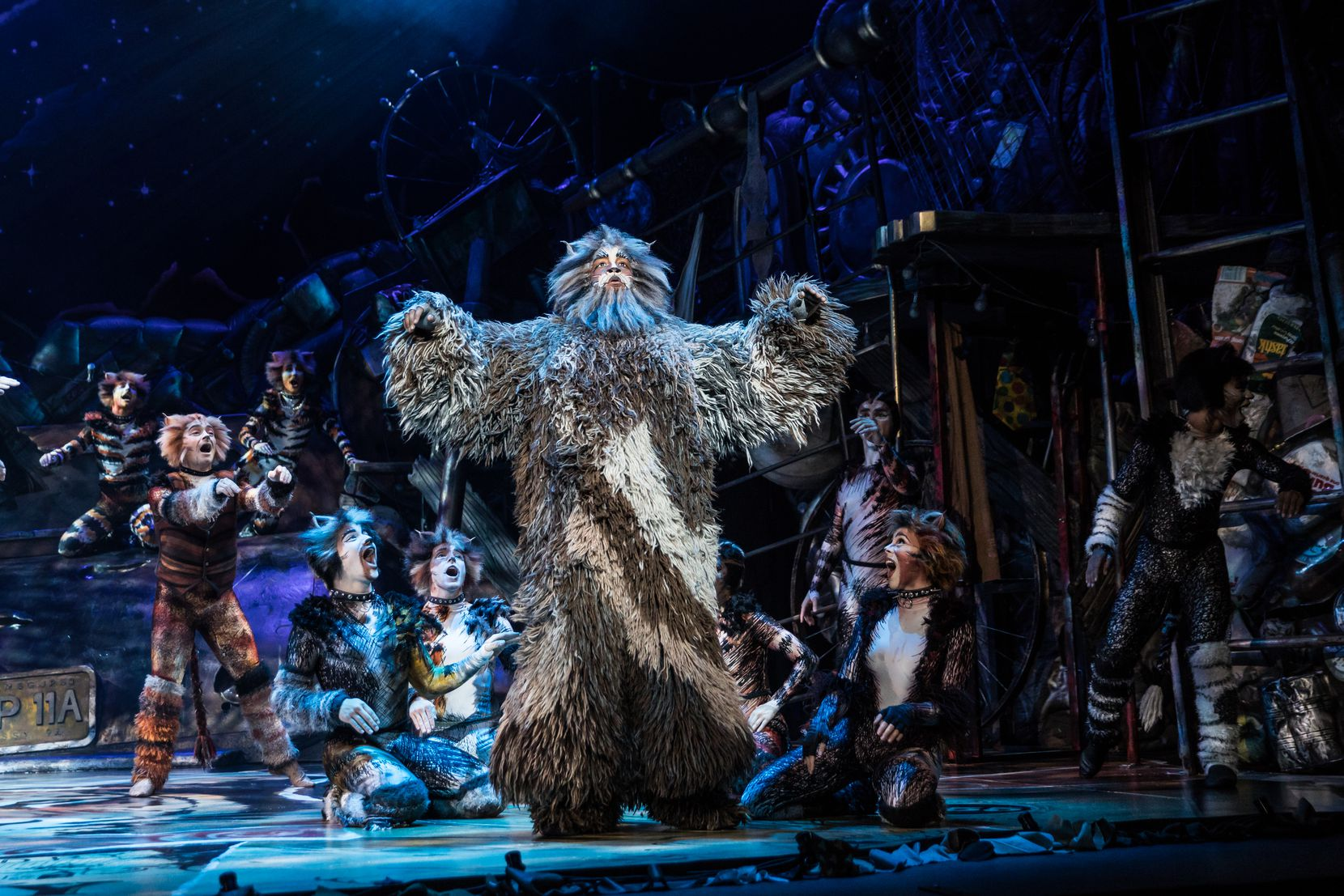 "Brandon Michael Nase stars as Old Deuteronomy in the North American tour of ""Cats."""