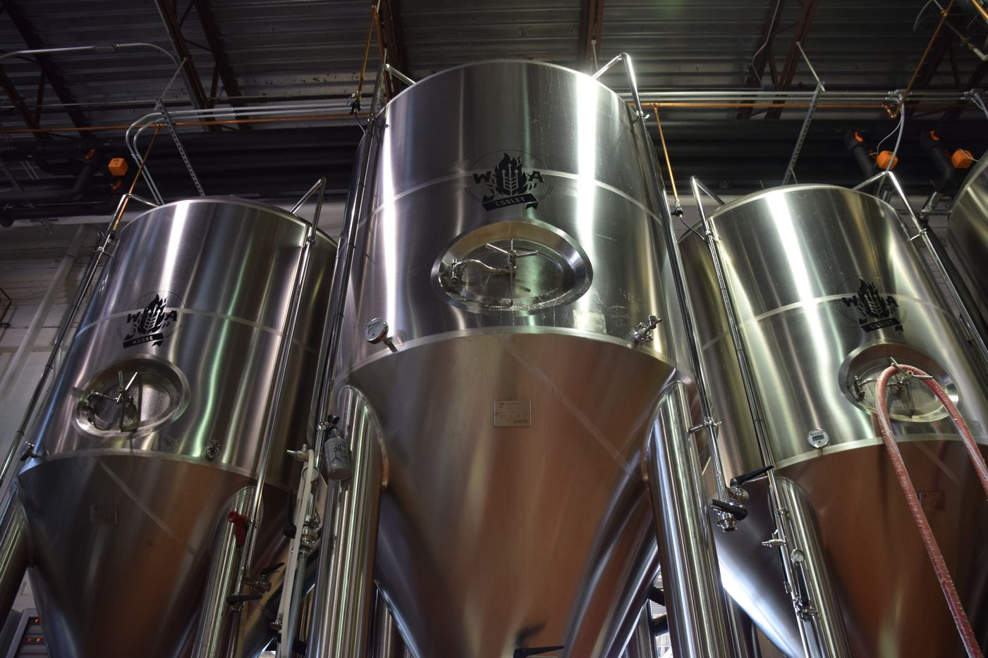 Wild Acre Brewing has a 30-barrel brewing system with 10,000 barrels worth of fermentation space.