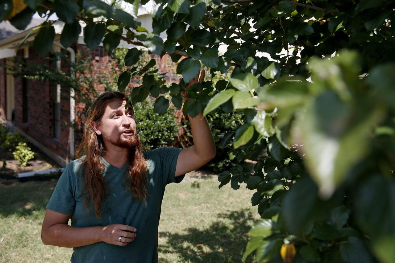Nicholas Burtner, who runs the School of Permaculture from his home in Plano, has food forests in his front and back yards and is designing one for Myers Park near McKinney.