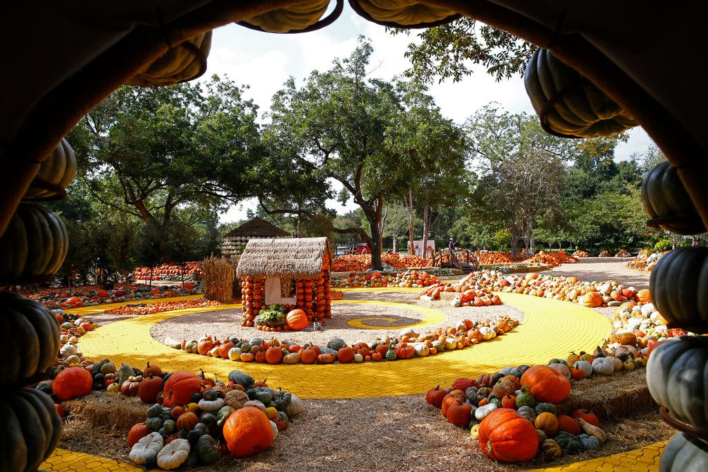 The Dallas Arboretum's Pumpkin Village, themed The Wonderful Wizard of Oz