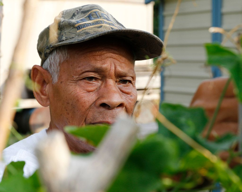 Song Soth, 72, arrives at the garden early in the morning to tend to his plants. While he takes plenty of vegetables home to his family, Soth harvests most of his crop for the East Dallas garden's weekend market. By selling their extra vegetables, the gardeners raise money to keep the garden going.