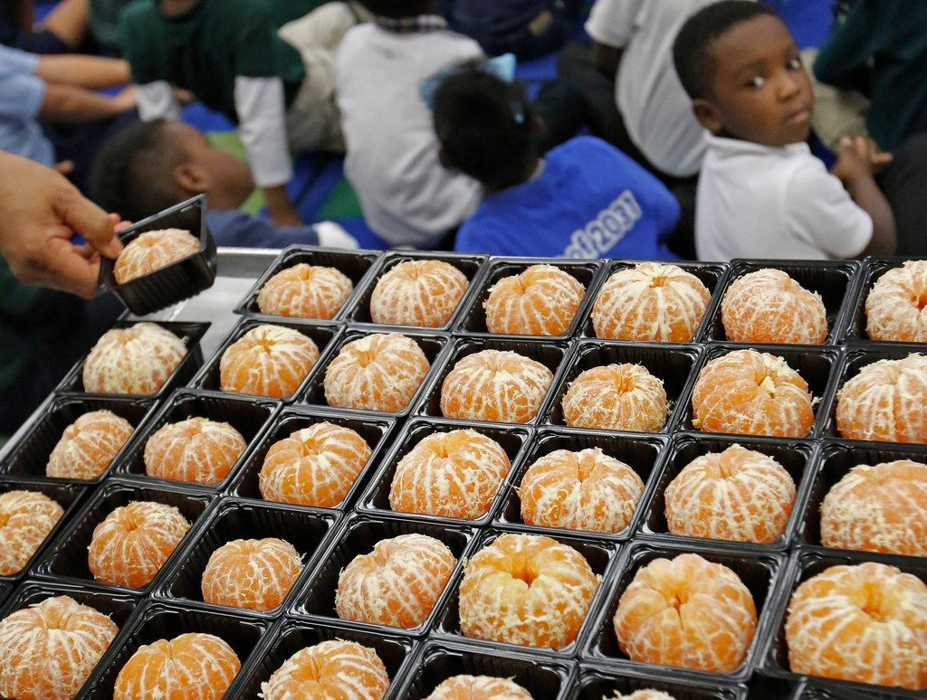 Students get ready to sample Satsuma oranges at N.W. Harllee Early Childhood Center in Dallas, as they learn about locally-sourced foods. Dallas ISD is among 10 major urban districts in the country vowing to increase the amount of food that is locally sourced.