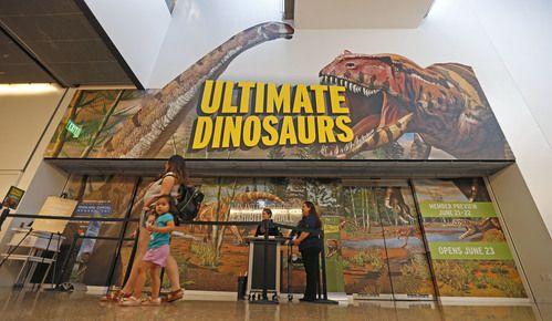 La exhibición Ultimate Dinosaurs, o Dinosaurios Extremos permanecerá abierta hasta el 6 de enero. (Jae S. Lee/DMN)