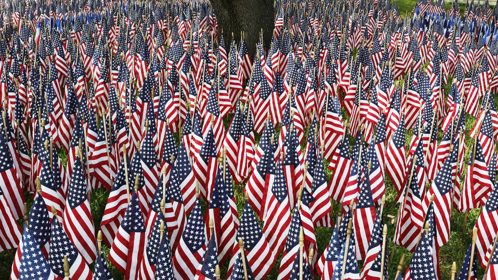 Hundreds of flags were placed at the entrance to Restland Memorial Park for the 76th Annual Memorial Day Service on Monday, May 30, 2016.