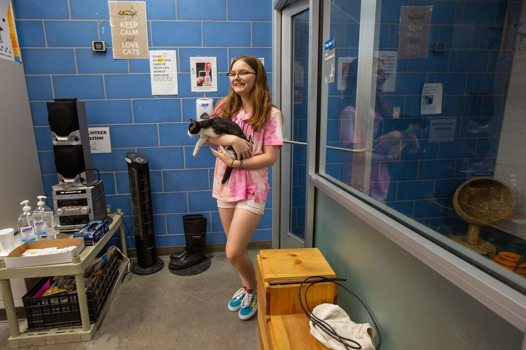 Destini Gutierrez holds Zorro the cat at the Dallas Animal Services facility on Thursday.